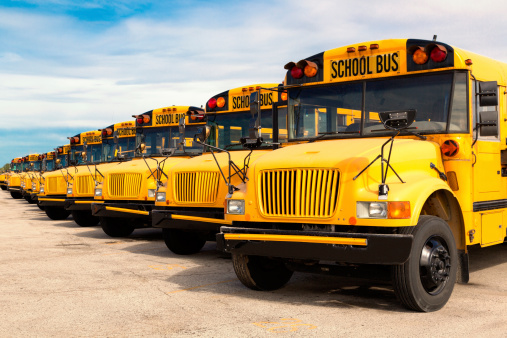 Row of parked school buses