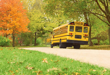 School bus driving in Autumn